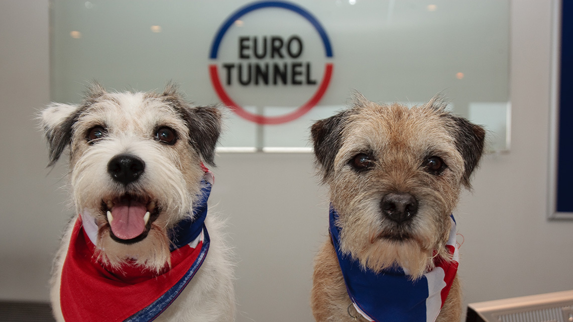 Histoire Getlink - 2000 - Eurotunnel transport animaux domestiques
