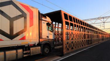 Eurotunnel, lien vital de la nouvelle économie